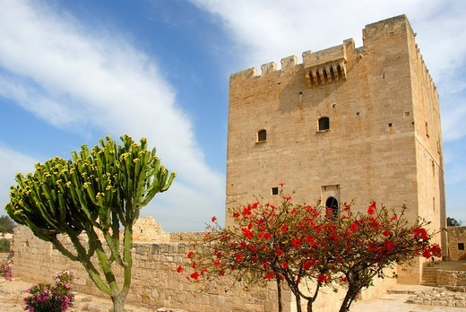 Fortress of the Crusaders, medieval castle, Order of St. John, residential tower, red blooming Hibiscus Hibiscus and Spurge Euphorbia, Kolossi near Limassol, Southern Cyprus, Republic of Cyprus, Mediterranean Sea, Europe : Stock Photo