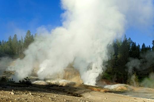 Stock Photo: 1848-555333 Norris Geyser Basin, Yellowstone National Park, Wyoming, USA, North America