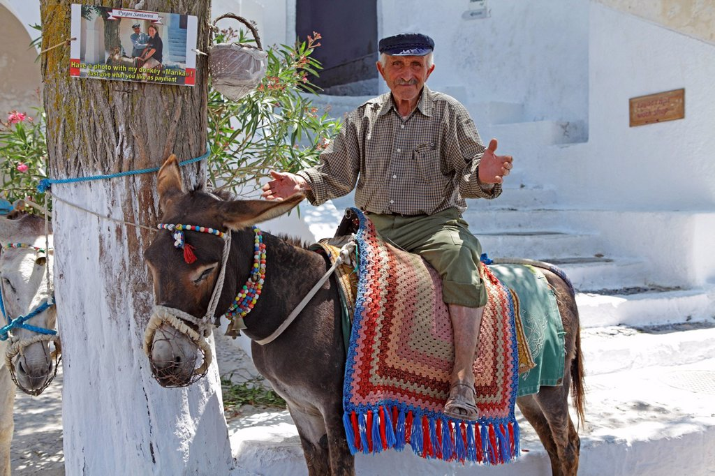 Stock Photo: 1848-555764 Greek man with his donkey, mountain village Pyrgos, Santorini, Cyclades, Aegean Sea, Greece, Europe