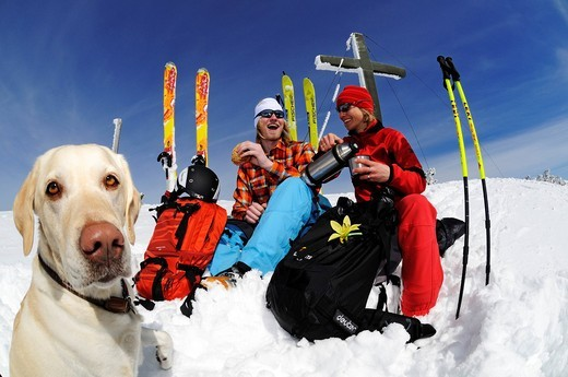 Stock Photo: 1848-557215 Skiers and dog on tour on Mt. Duerrnbachhorn, Reit im Winkl, Chiemgau, Upper Bavaria, Germany, Europe
