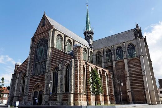 Maria Magdalenakerk church, late Gothic church, Goes, Zeeland province, Netherlands, Benelux, Europe : Stock Photo