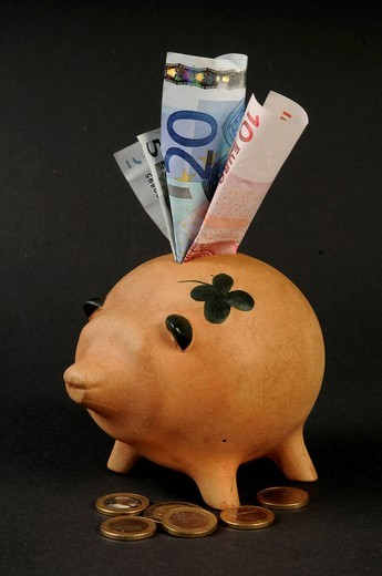Piggy bank with euro notes : Stock Photo