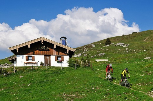 Mountain bikers on Eggenalm alpine pasture, Reit im Winkl, Bavaria, Germany, Europe, Tyrol, Austria, Europe : Stock Photo