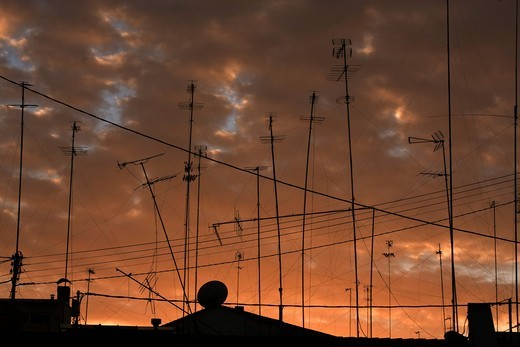 Forest of antennas : Stock Photo