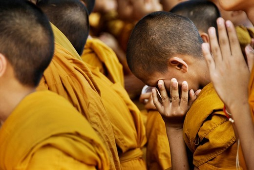 Young novice monks at prayer in Chiang Mai, Thailand, Asia : Stock Photo