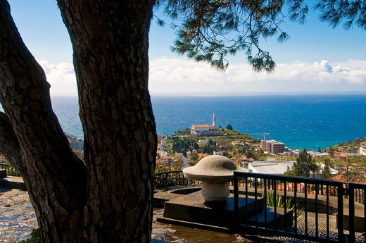 Stock Photo: 1848-559932 View over city of Funchal, Madeira, Portugal, Europe