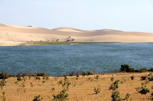 The White Lake, Lotus Lake, and The White Sand Dunes, Bau Trang, near Mui Ne, South Vietnam, Southeast Asia : Stock Photo
