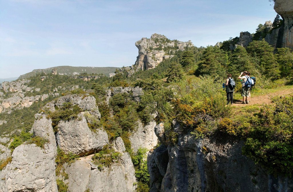 Stock Photo: 1848-562337 Gorges de la Jonte, the Causses and the Cevennes, Mediterranean agro pastoral cultural landscape, UNESCO World Heritage, Lozere, France, Europe