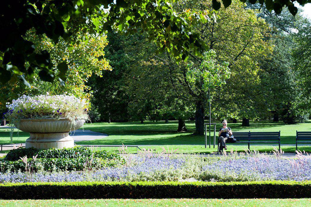 Regent´s Park, London, England, United Kingdom, Europe : Stock Photo