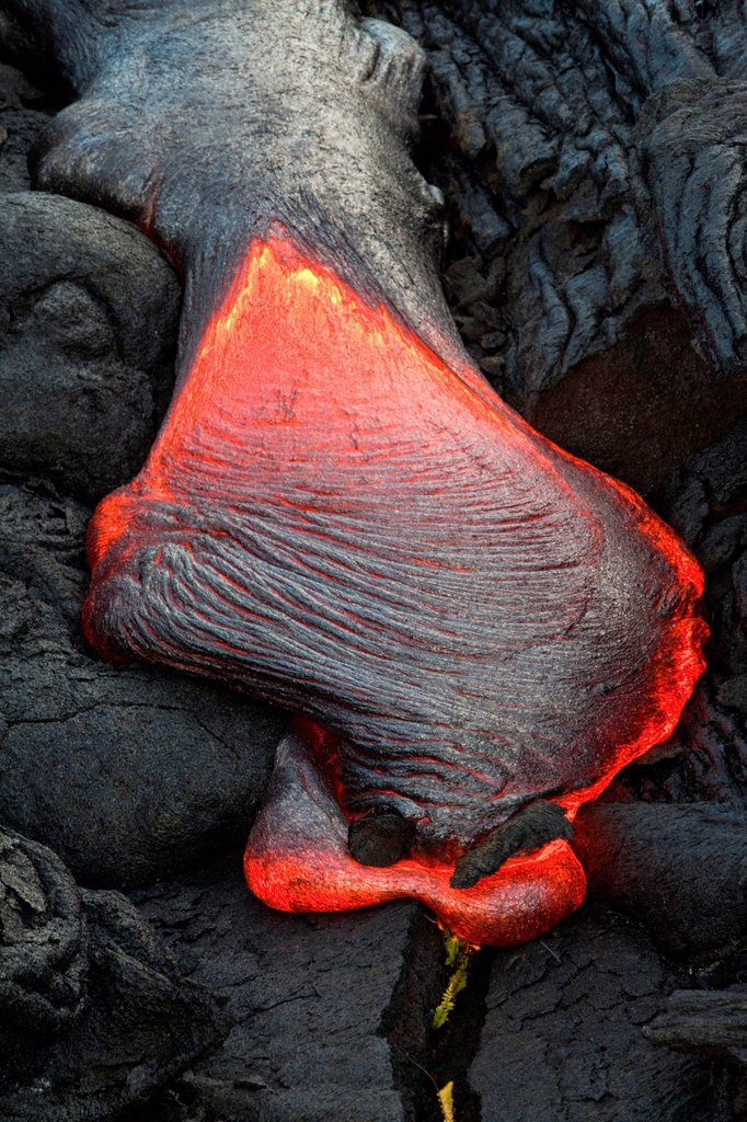 Stock Photo: 1848-564673 Molten pahoehoe type lava flowing from a crack in the East Rift Zone towards the sea, lava field of the Kilauea shield volcano, Hawai´i Volcanoes National Park, Kalapana, Hawai´i, USA