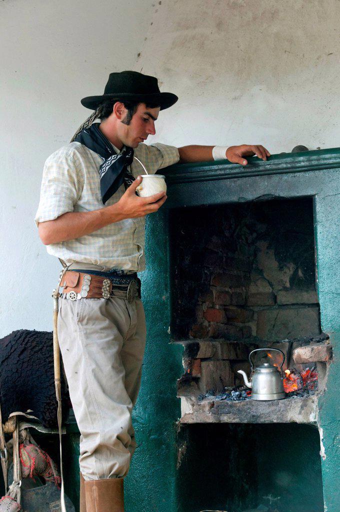Gaucho drinking mate tea, Estancia San Isidro del Llano towards Carmen Casares, Buenos Aires province, Argentina, South America : Stock Photo