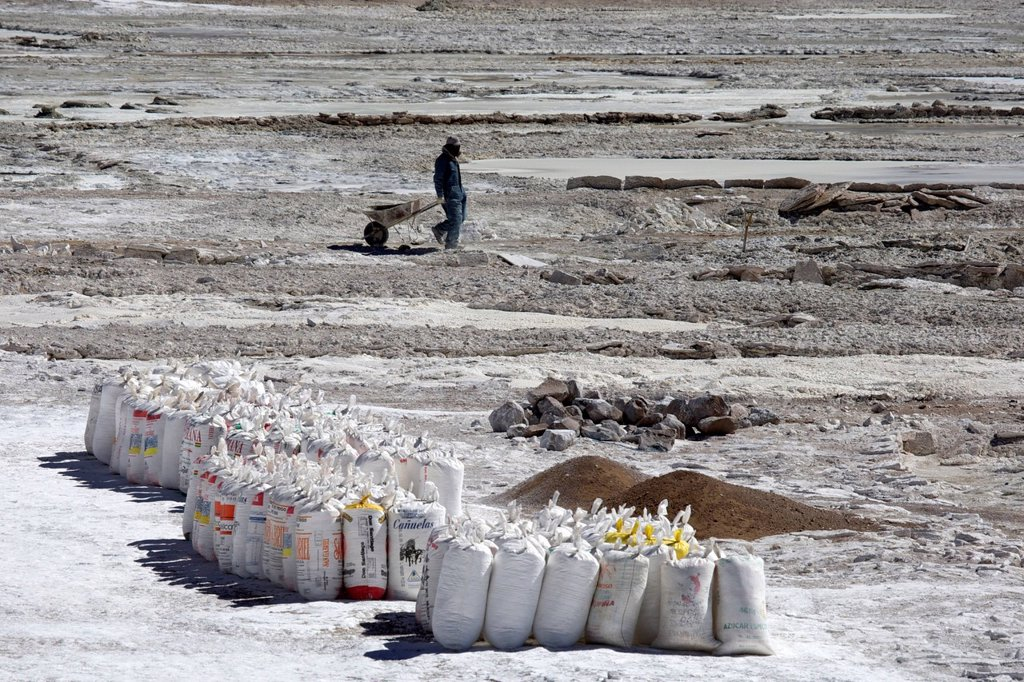 Salt worker with a wheelbarrow, flour sacks packed with salt at a salt lake, Altiplano, Potosi, southern Bolivia, South America : Stock Photo