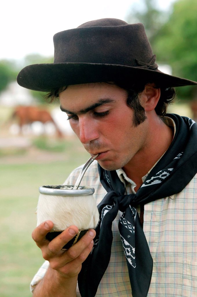 Stock Photo: 1848-570373 Gaucho drinking mate tea, Estancia San Isidro del Llano towards Carmen Casares, Buenos Aires province, Argentina, South America