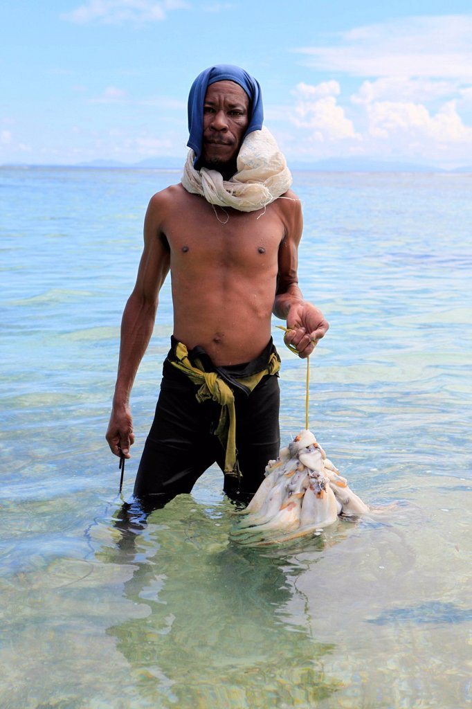 Stock Photo: 1848-573406 Octopus fishing, La Digue, Seychelles, Africa, Indian Ocean