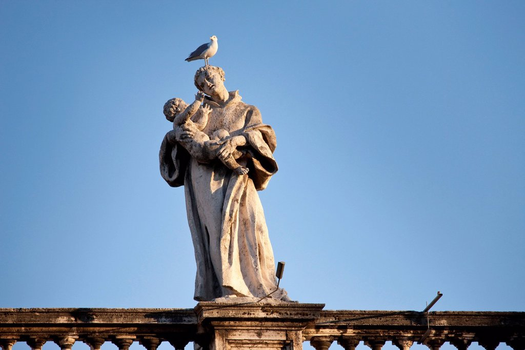 Stock Photo: 1848-573913 One of the 144 saint statues on the colonnades of St. Peter´s Square, with a seagull on his head, Rome, Italy, Europe