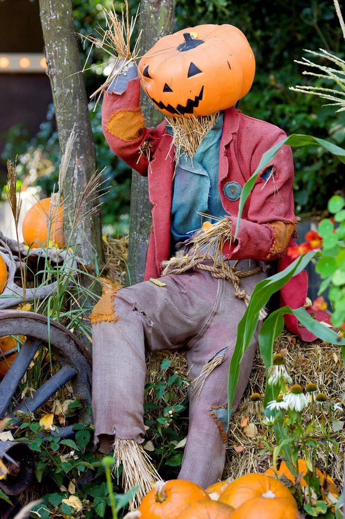 Halloween scarecrow in Tivoli, Copenhagen, Denmark, Europe : Stock Photo