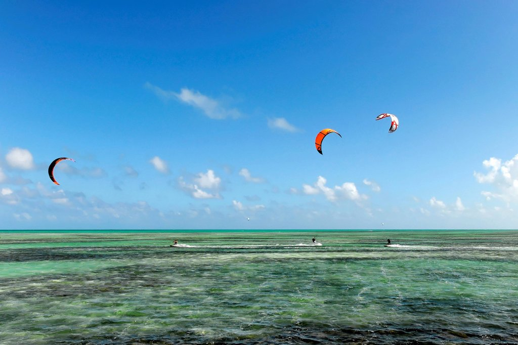Kitesurfers near Playa Pilar, Caya Coco, north coast, Cuba, Greater Antilles, Central America, America : Stock Photo