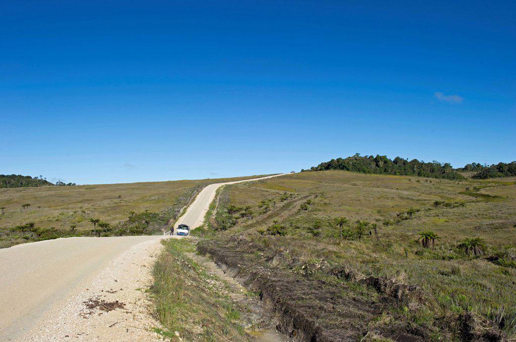 Stock Photo: 1848-576418 Road through alpine grassland at Tari Gap, Southern Highlands, Papua New Guinea, Oceania