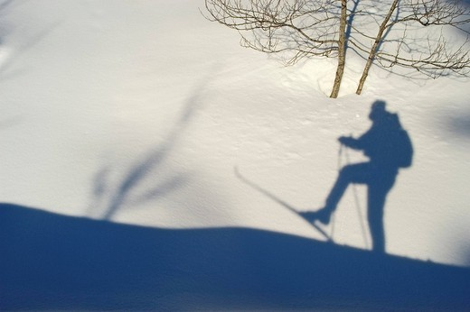 Stock Photo: 1848-57933 Shaddow of cross_country skier in the snow int the cross_country ski run