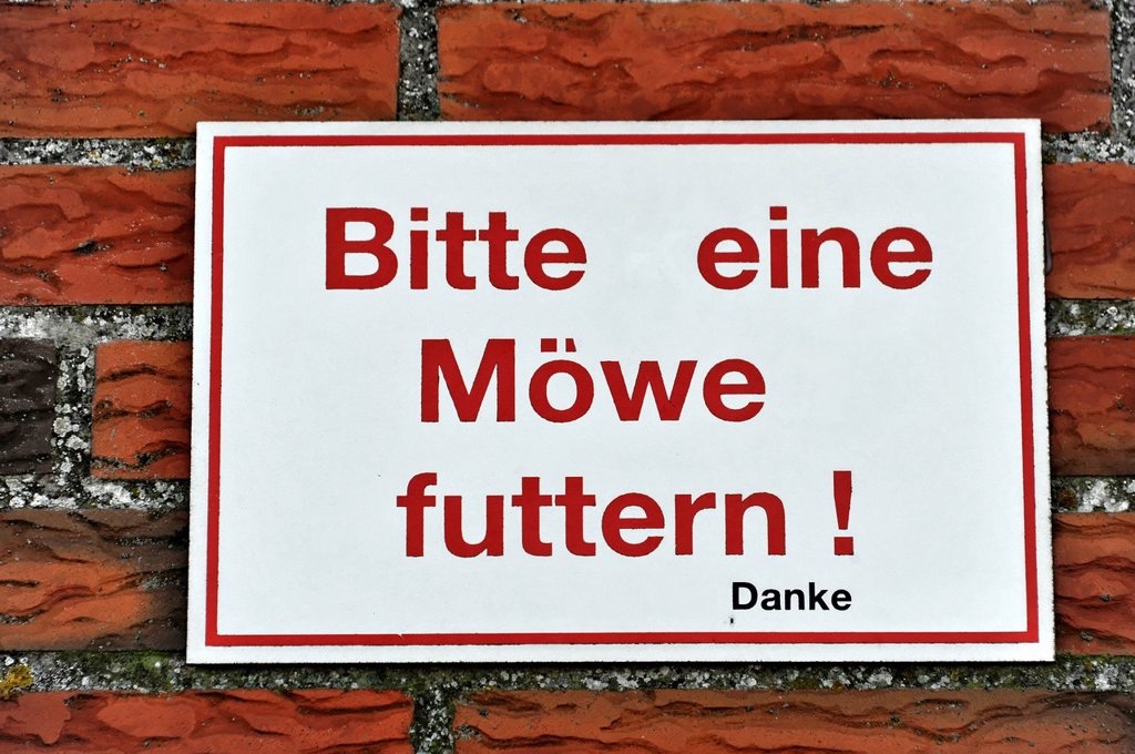 Stock Photo: 1848-580661 Bitte eine Moewe futtern, Please feed a seagull, altered sign at a restaurant, Eidersperrwerk, Eider Barrage, construction began in 1967, near Toenning, Schleswig_Holstein, Germany, Europe