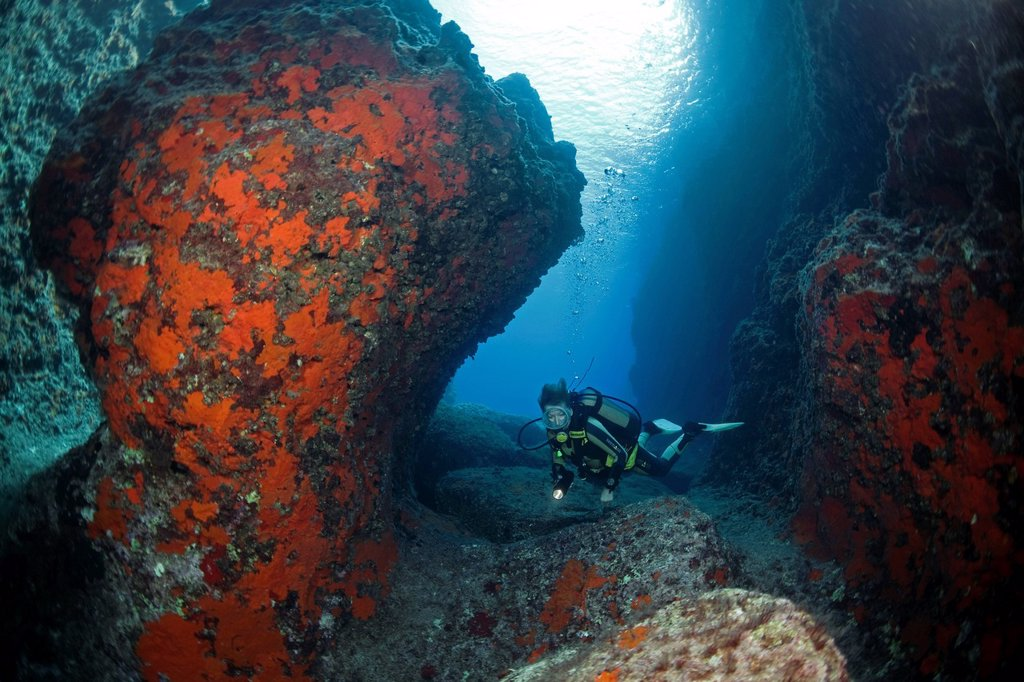 Diver in a rocky underwater landscape with a canyon, orange encrusting sponges Spirastrella cunctatrix, Five Islands off the Cape of Gelidonya, Turkey, Adrasan, Mediterranean Sea : Stock Photo