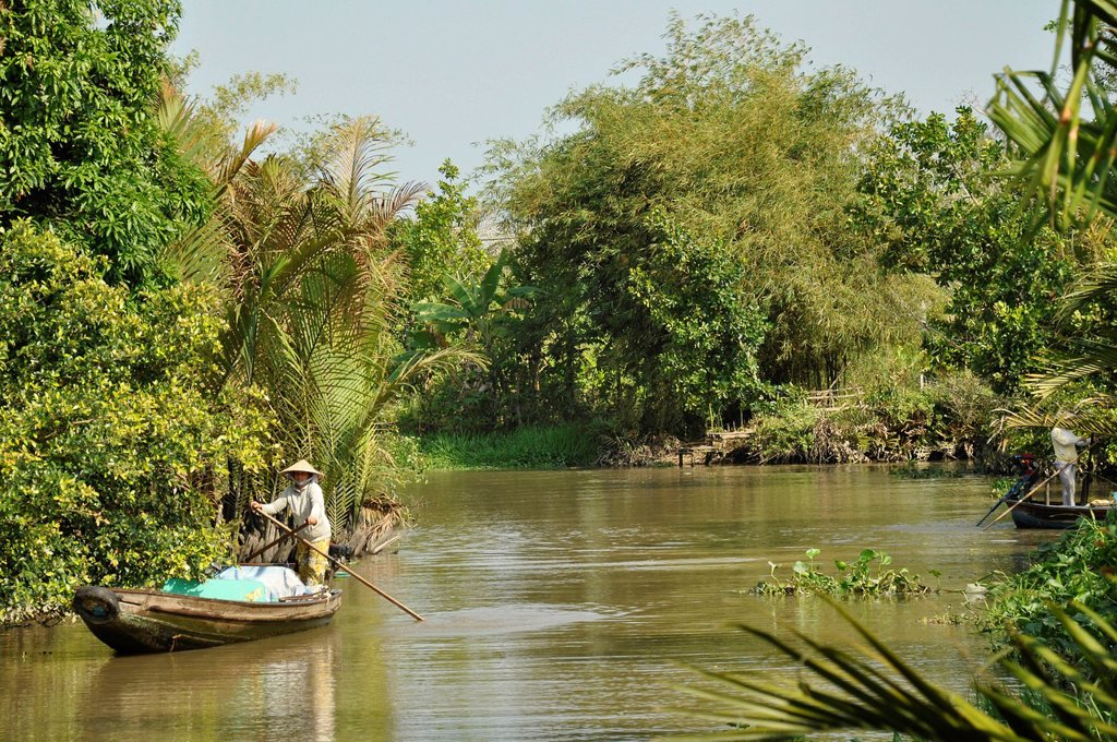 Stock Photo: 1848-584320 Branch of the river in the Mekong Delta, traditional rowing boat, Can Tho, Mekong Delta, Vietnam, Southeast Asia, Asia
