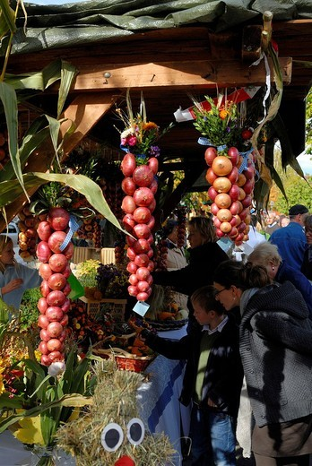 Stock Photo: 1848-58637 Market stall with strings of onions, traditional harvest decoration