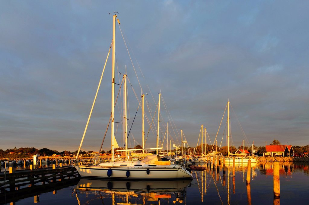 Stock Photo: 1848-586566 Harbour at sunrise, Spodsbjerg, Langeland, Denmark, Europe