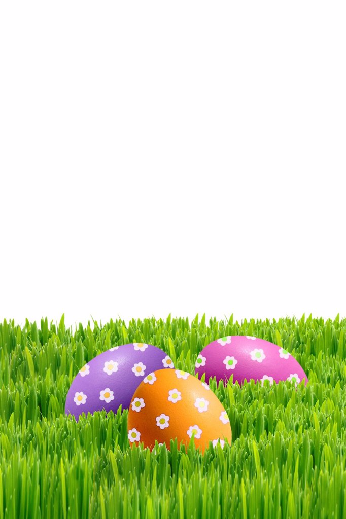 Colourfully painted Easter eggs on green grass : Stock Photo