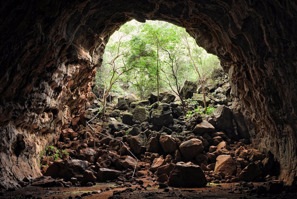 Stock Photo: 1848-590214 H_Section lava tube, entrance, Undara Volcanic National Park, Undara, Queensland, Australia