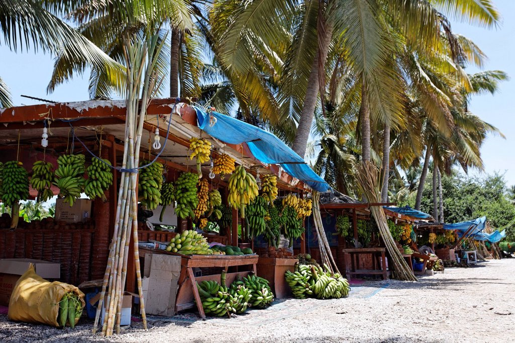 Stock Photo: 1848-591552 Traditional fruit stall at a roadside, palm trees, Salalah, Dhofar, Sultanate of Oman, Gulf State, Arabian Peninsula, Middle East, Asia