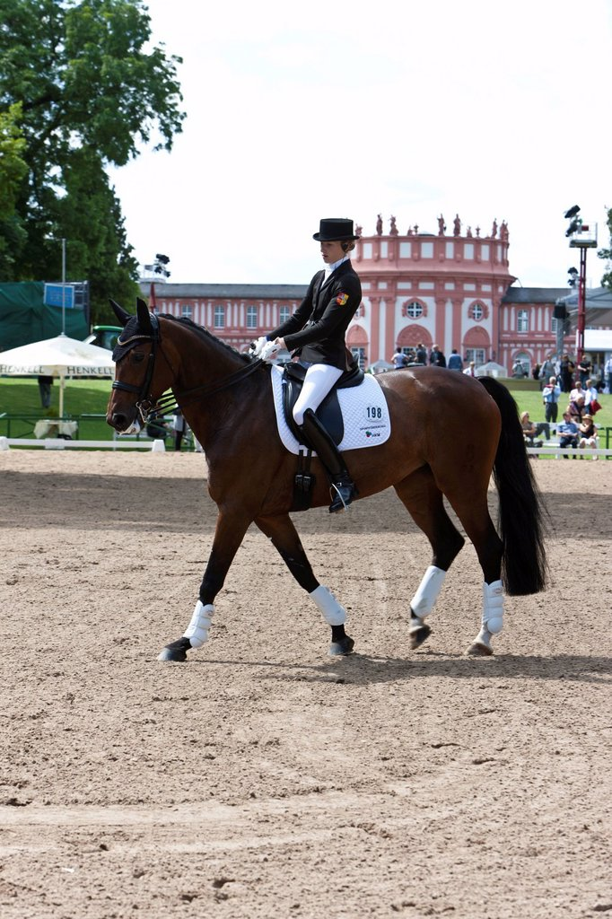 Dressage, International Pentecostal show jumping and dressage competition, Schlosspark Biebrich palace gardens, Wiesbaden Castle, Wiesbaden, Hesse, Germany, Europe : Stock Photo
