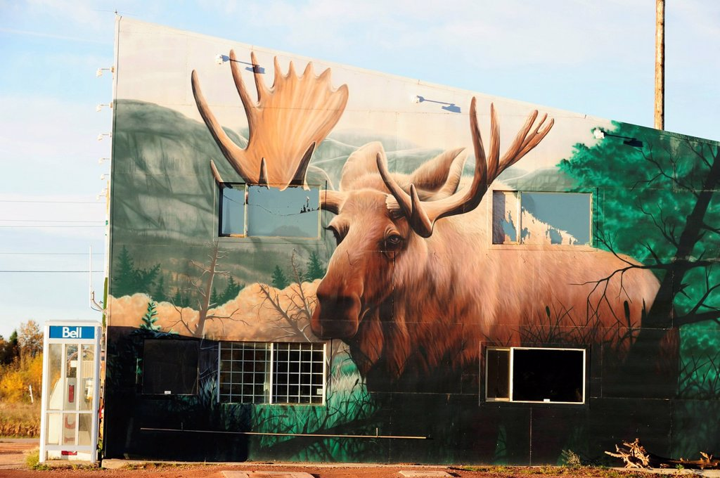 Stock Photo: 1848-595236 Moose, typical Canadian mural, Ontario, Canada
