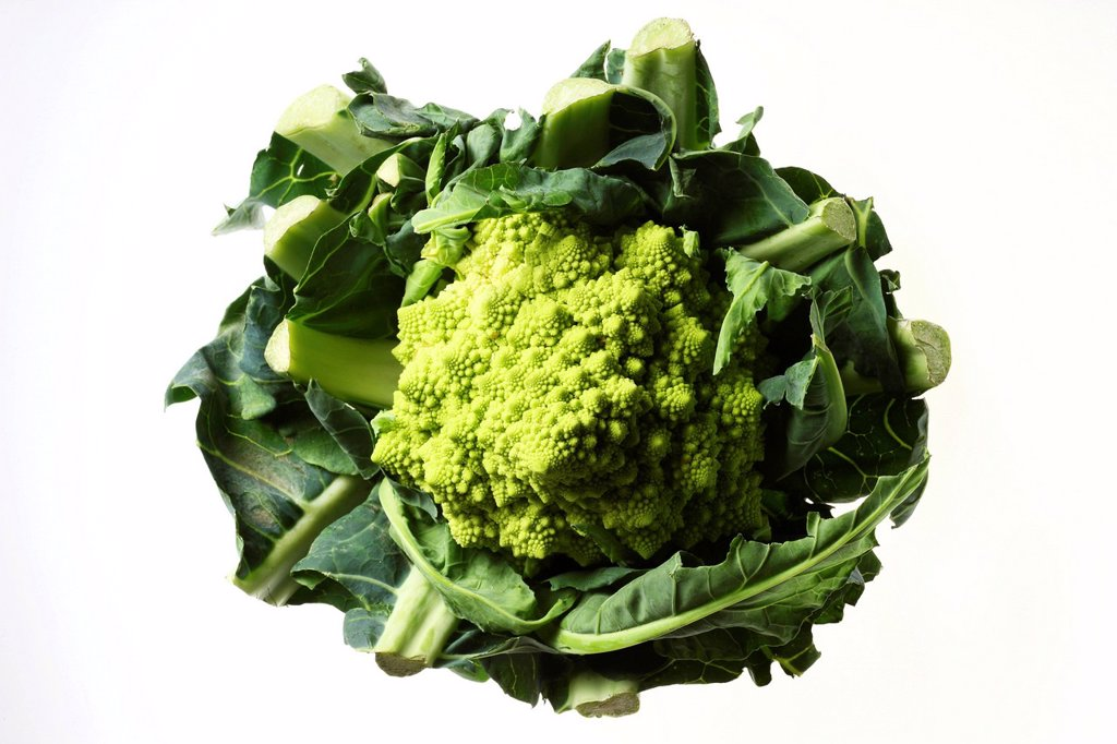 Romanesco broccoli, or Roman cauliflower Brassica oleracea convar. botrytis var. botrytis, cauliflower variant : Stock Photo