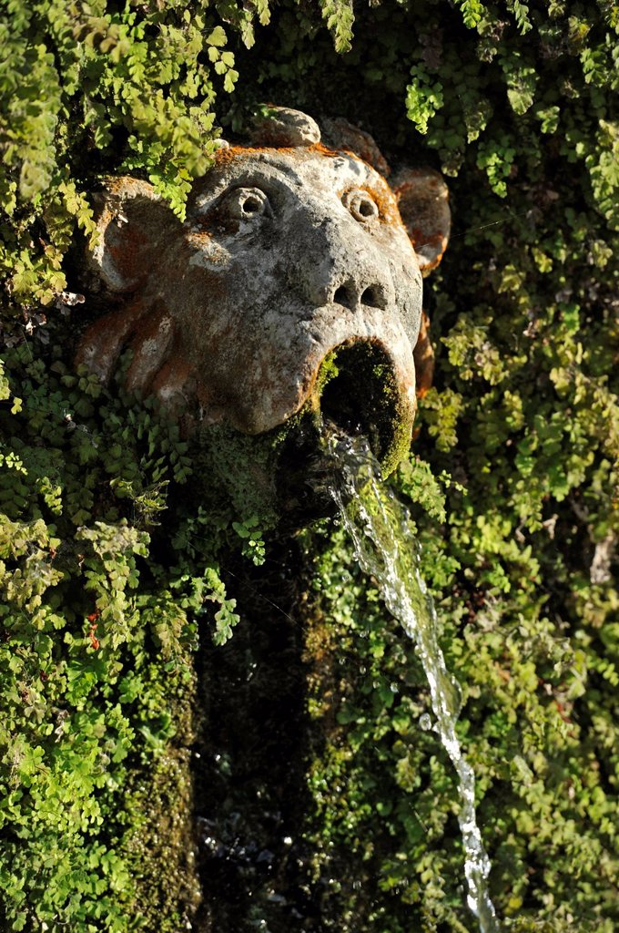 Stock Photo: 1848-596189 Gargoyle, Viale delle Cento Fontane or Alley of the Hundred Fountains, Garden of the Villa d´Este, UNESCO World Heritage Site, Tivoli, Lazio, Italy, Europe