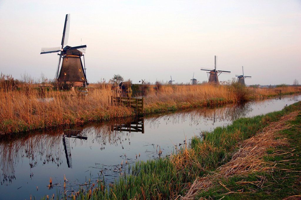 Stock Photo: 1848-597879 Historic windmills, UNESCO World Heritage Site, Kinderdijk, South Holland, Netherlands, Europe