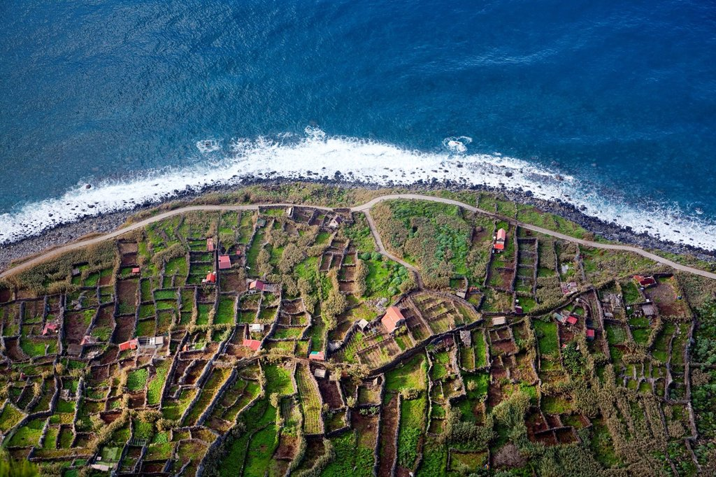 Fields on the rocky cliffs of the Atlantic coast at Achadas da Cruz, Madeira, Portugal, Europe : Stock Photo