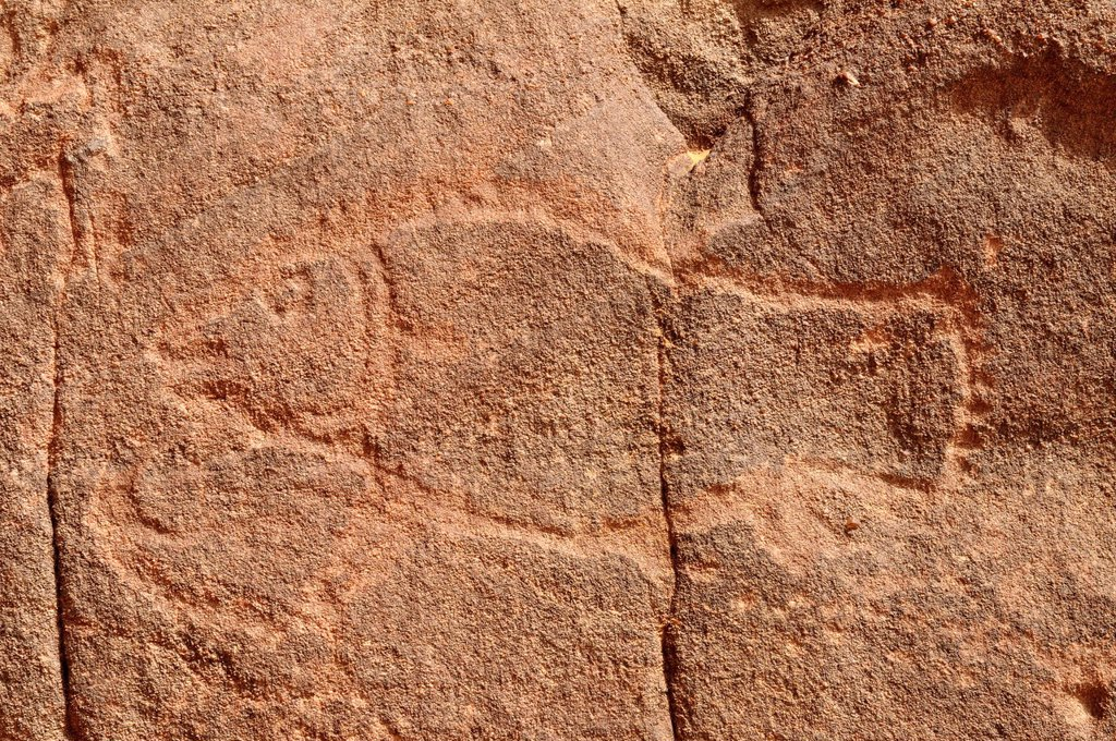 Stock Photo: 1848-603668 Fish engraving, neolithic rockart of the Acacus Mountains or Tadrart Acacus range, Tassili n´Ajjer National Park, Unesco World Heritage Site, Algeria, Sahara, North Africa