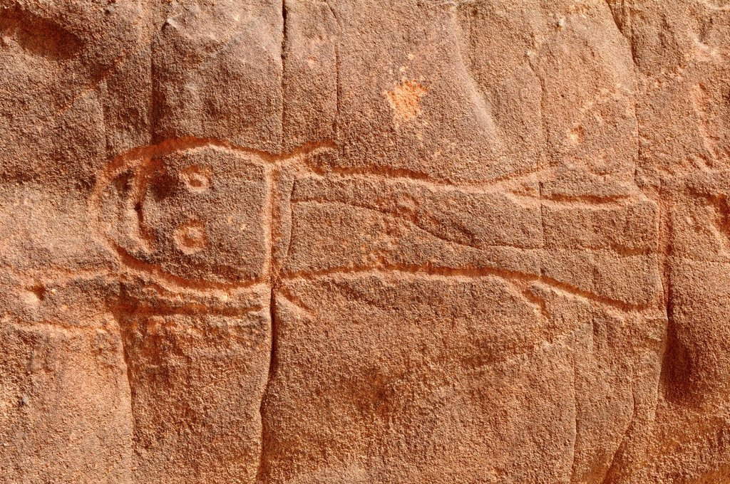 Stock Photo: 1848-604489 Fish engraving, neolithic rockart of the Acacus Mountains or Tadrart Acacus range, Tassili n´Ajjer National Park, Unesco World Heritage Site, Algeria, Sahara, North Africa