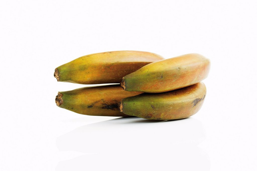 Stock Photo: 1848-604826 Red bananas Musa from Mexico