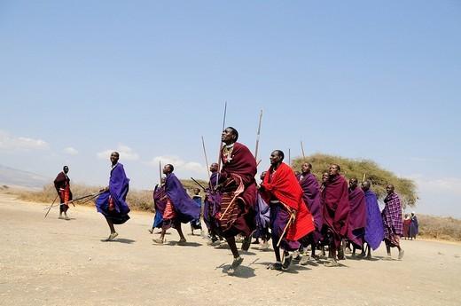 Massai doing a traditional dance in the village of Kiloki, Serengeti, Tanzania, Africa : Stock Photo