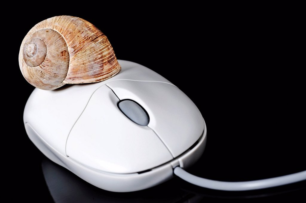 Stock Photo: 1848-606052 Computer mouse with a snail shell, symbolic image for two_tiered Internet