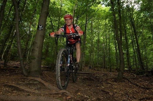Mountain bike rider riding along a root singletrail near Willingen, Hesse, Germany, Europe : Stock Photo