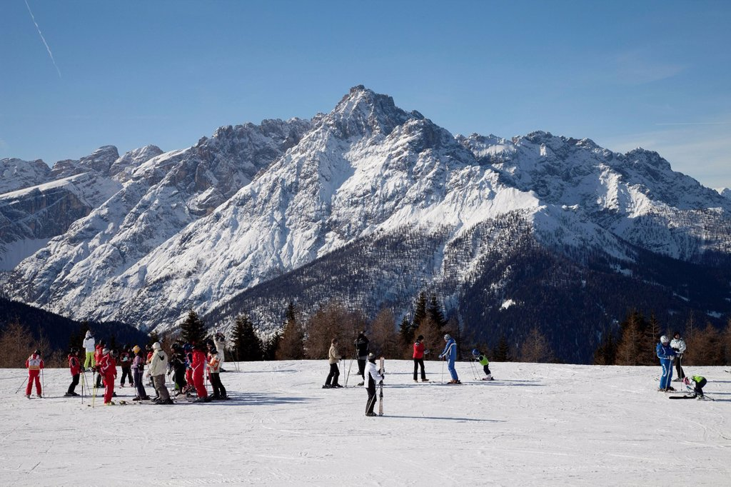 Skiing school, meeting point, 2060m, Helm mountain, Sexten Dolomites nature reserve, Vierschach, Sextental valley, province of Bolzano_Bozen, Italy, Europe : Stock Photo