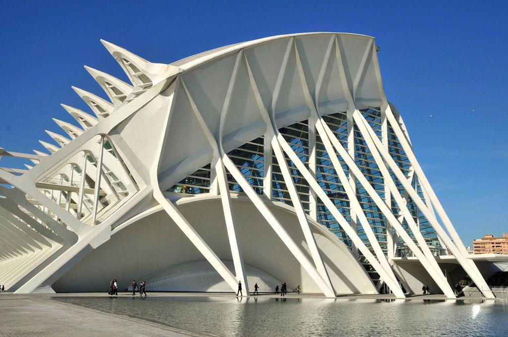 Museo de las Ciencias Principe Filipe in the Ciudad de las Artes y las Ciencias, City of Arts and Sciences, designed by Spanish architect Santiago Calatrava, Valencia, Comunidad Valenciana, Spain, Europe : Stock Photo