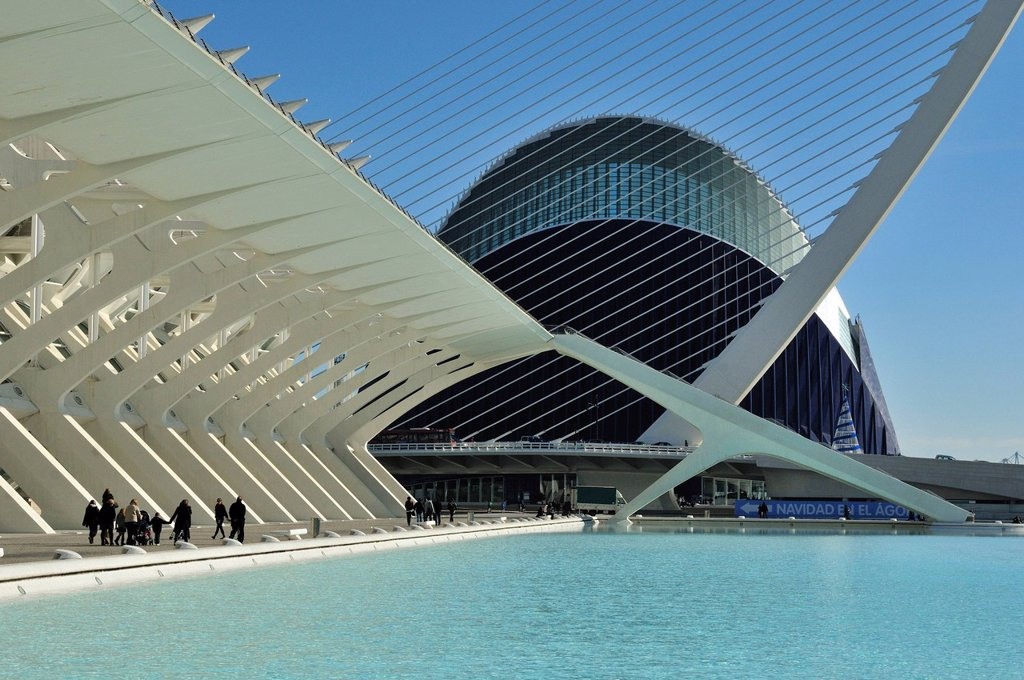 Museo de las Ciencias Principe Filipe in the Ciudad de las Artes y las Ciencias, City of Arts and Sciences, designed by Spanish architect Santiago Calatrava, Valencia, Comunidad Valenciana, Spain, Europe : Stock Photo