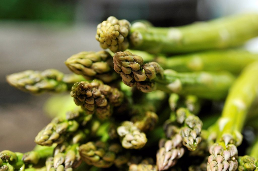 Stock Photo: 1848-612070 Fresh green asparagus Asparagus officinalis lying on a cutting board