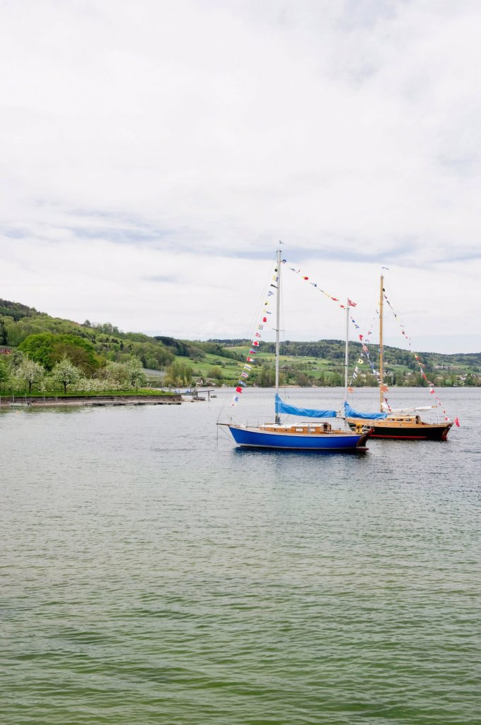 Stock Photo: 1848-612114 Sailboats at Untersee Lake near Steckborn, Canton Thurgau, Lake Constance, Switzerland, Europe