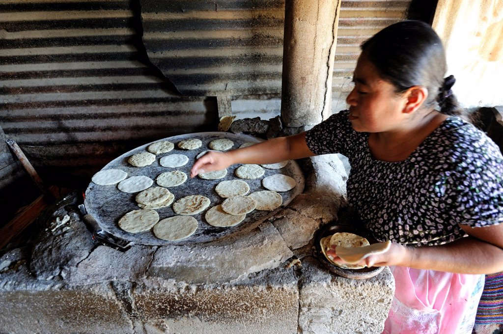Tortillas being made in a kitchen, Lomas de Santa Faz slum, Guatemala City, Guatemala, Central America : Stock Photo
