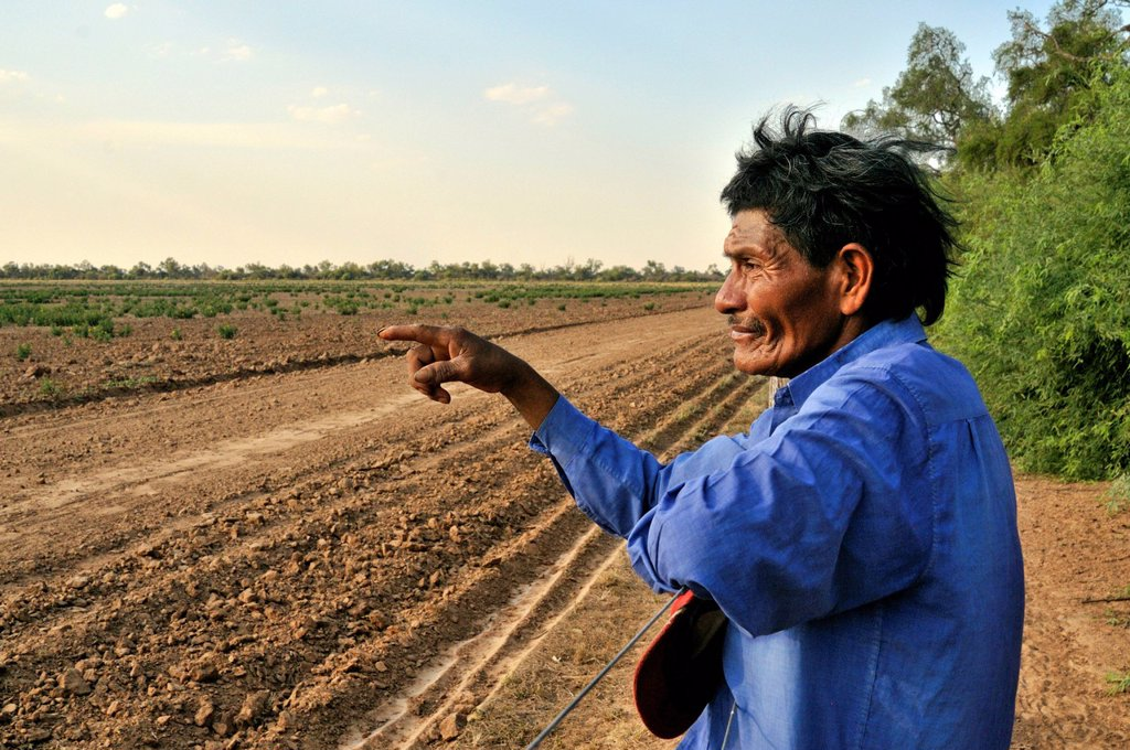 Stock Photo: 1848-612222 Land grabbing, Pedro Segundo of the Wichi tribe, Cacique, leader, of the community of San José standing at a fence separating their habitat from the soy plantations of investors and great land owners in the Chaco forest of northern Argentina who have take. Land grabbing, Pedro Segundo of the Wichi tribe, Cacique, leader, of the community of San José standing at a fence separating their habitat from the soy plantations of investors and great land owners in the Chaco forest of northern Argentina w